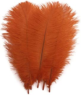 Best orange ostrich feathers Reviews
