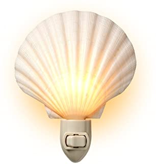 Real Sea Shell Beach Night Light by Tumbler Home – Real, Natural, Perfect for Beach Home Decor