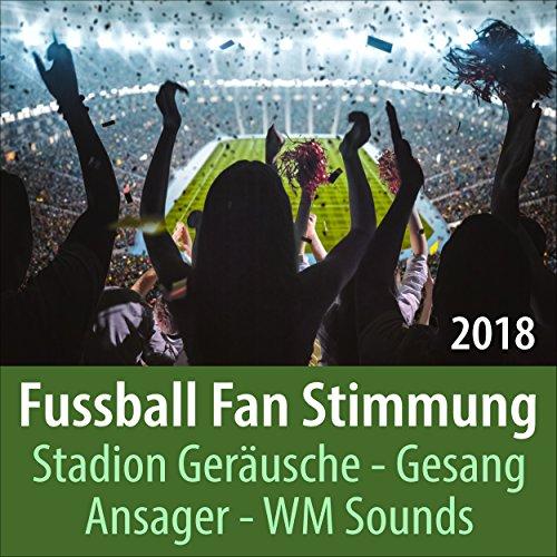Fussball Stadionstimmung: Unterstützung der eigenen Mannschaft, Angriff, Klatschen, Schreien