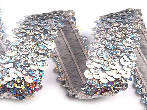 Stoffe-Online-Shop Stretch-Pailletten, Paillettenband, Paillettenborte elastisch, mit Hologramm-Effekt in Silber oder Gold erhältlich, Breite 30mm, VE: 1m (Silber)