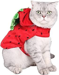 strawberry cat costume