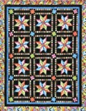 Flying Swallows Quilt Pattern by Pam Goggans Studio 180