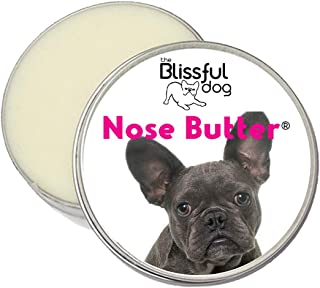Best blue nose french bulldog Reviews