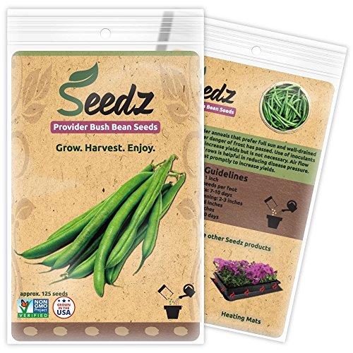 Organic Green Bean Seeds, APPR. 125, Green Bean, Heirloom Vegetable Seeds, Certified Organic, Non GMO, Non Hybrid, USA