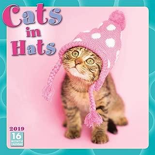 Cats in Hats 2019 Wall Calendar