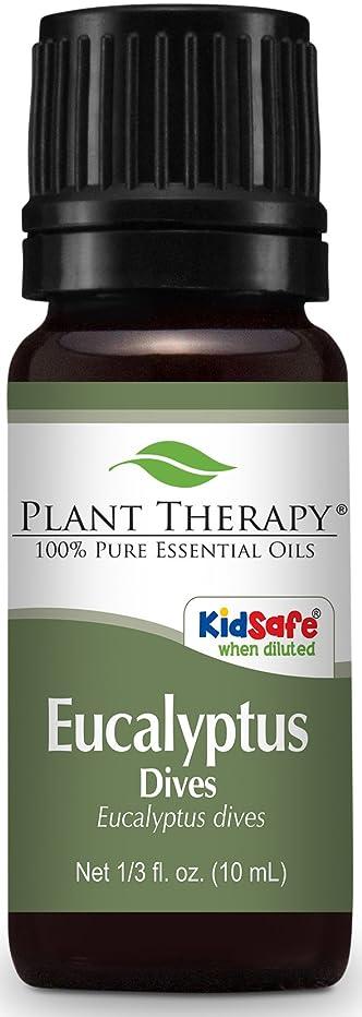 優雅望む神話Plant Therapy Eucalyptus Dives (Peppermint) Essential Oil 10 mL (1/3 oz) 100% Pure, Undiluted, Therapeutic Grade
