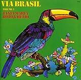 Viva Brasil Vol.2