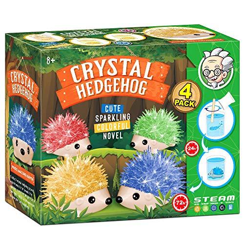 Dr. Daz Hedgehog Crystal Growing Igel Kristall Züchten Igel Spielzeug Züchten Experimentieren Wissenschaftler Geschenk Kinder Experimentierkasten Experimente Kristalle Züchten Ab 8 9 10 Jahre