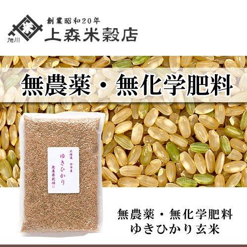 北海道産 無農薬ゆきひかり玄米1kg