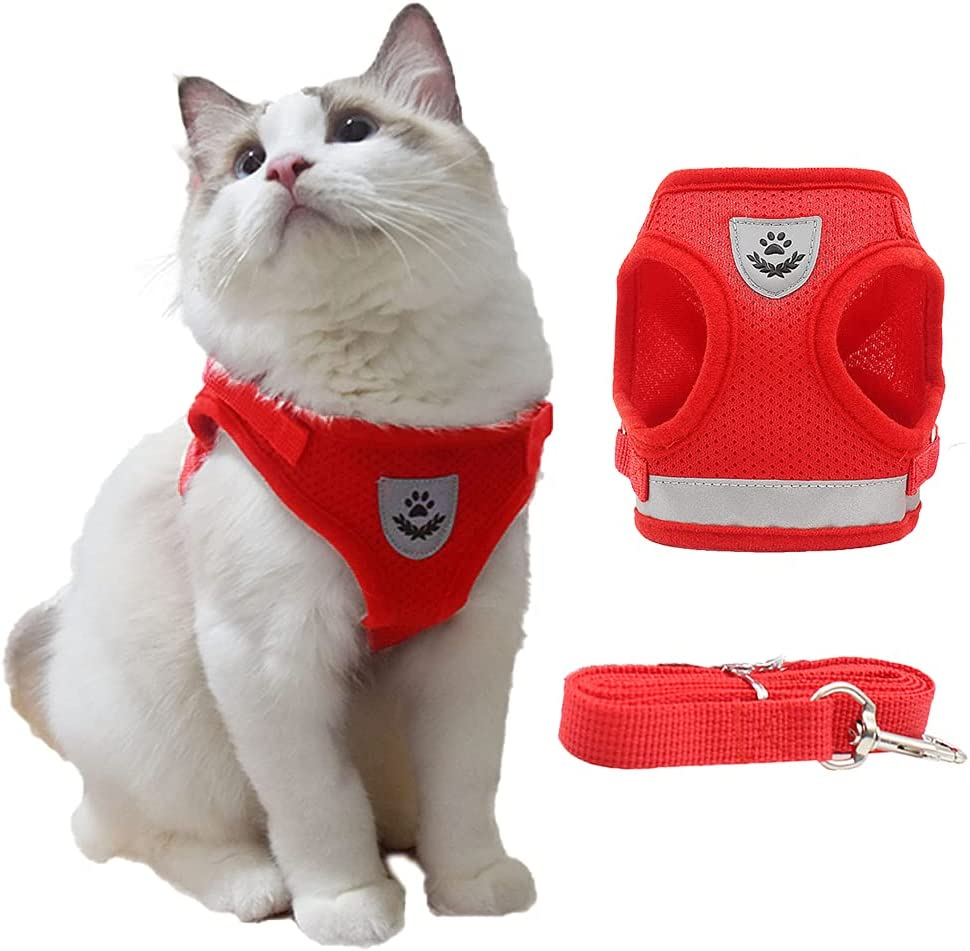Siudaro Cat Harness Ranking TOP5 and Leash for Escape Max 46% OFF Adjusta - Proof Walking