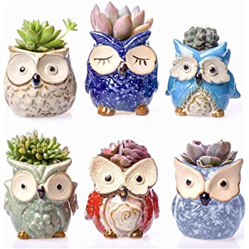 "Claywa Ceramic Owl Succulent Pots Cute Animal Plant Planters 2.75"" to 3.35"" with Drainage Pack of 6 Plants Not Included"