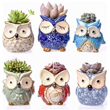 Claywa Ceramic Owl Succulent Pots Cute Animal Plant Planters 2.75  to 3.35  with Drainage Pack of 6 Plants Not Included