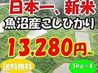 平成28年新潟県産特定産地米 (魚沼産5㎏×4)