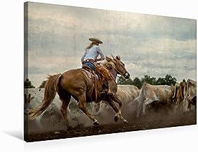 Premium - Lienzo textil (75 cm x 50 cm, horizontal, diseño del calendario de Mecklemburgo salvaje Oeste, imagen sobre bastidor, listo para trabajar en el oeste (animales de Calvendo)