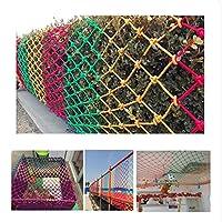 多目的な用途のセーフティネット ご家庭での階段/手すりの安全対策ネット 落下防止用の安全ネット カラー装飾ネット子供安全ネットウィービングネットバルコニー保護ネット階段安全ネット幼稚園防護柵ネットバルコニー階段柵2 * 8メートルグリッド80×80ミリメートル 園芸用ネット、防鳥網 木、庭、屋根、農場、田畑、池、窓部、屋内など怪我防止 危険防止 簡単設置 (Size : 2x10m)