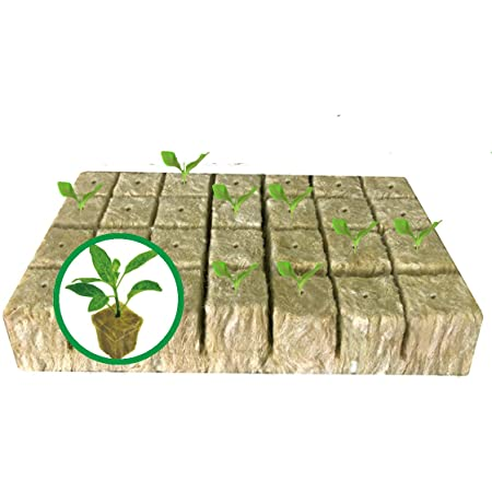 """1.5"""" Rockwool Starter Plugs for Hydroponics, Rockwool Grow Cubes, 1 Sheets of 28 Plugs (28) (Small)"""