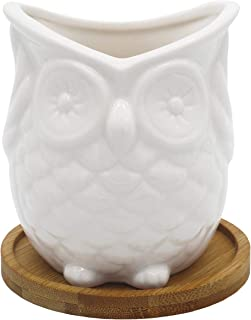 Gemseek White Ceramic Owl Succulent Planter Pot, Single Cute Animal Shaped Cactus Flower Container Bonsai Holder with Bamboo Drainage Tray for Indoor Home Décor