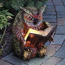 Exhart Reading Owl Resin Statue w/Solar Garden Lights - Solar Owl Mini Figurine, Bookworm Owl Statue, Resin Owl Decor, Owl Decorations for Bedroom, Private Library & Living Room, 7
