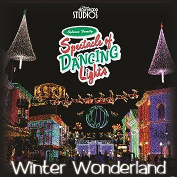 "Winter Wonderland (from ""Osborne Family Spectacle of Dancing Lights"")"