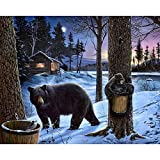 DIY Oil Painting Paint by Number Kit Snow Bear Oil Painting by Numbers Kit,Gorgeous Painting for Home Decoration and Gift 40x50cm