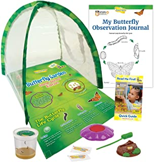 Butterfly Garden Home School Edition With Live Caterpillars