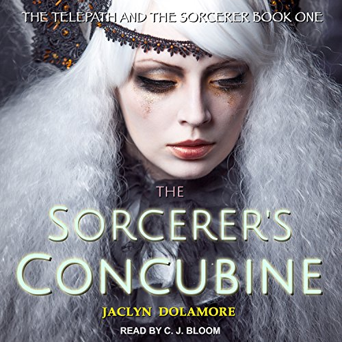 The Sorcerer's Concubine audiobook cover art