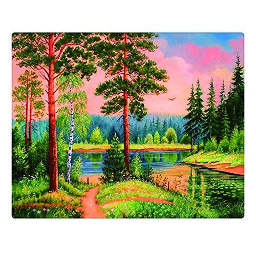 KVNUFKKN Måla efter nummer gör-det-själv oljemålning kit för vuxna och barn med färgborstar och akrylpigment heminredning - träbäck (40 x 50 cm utan ram)