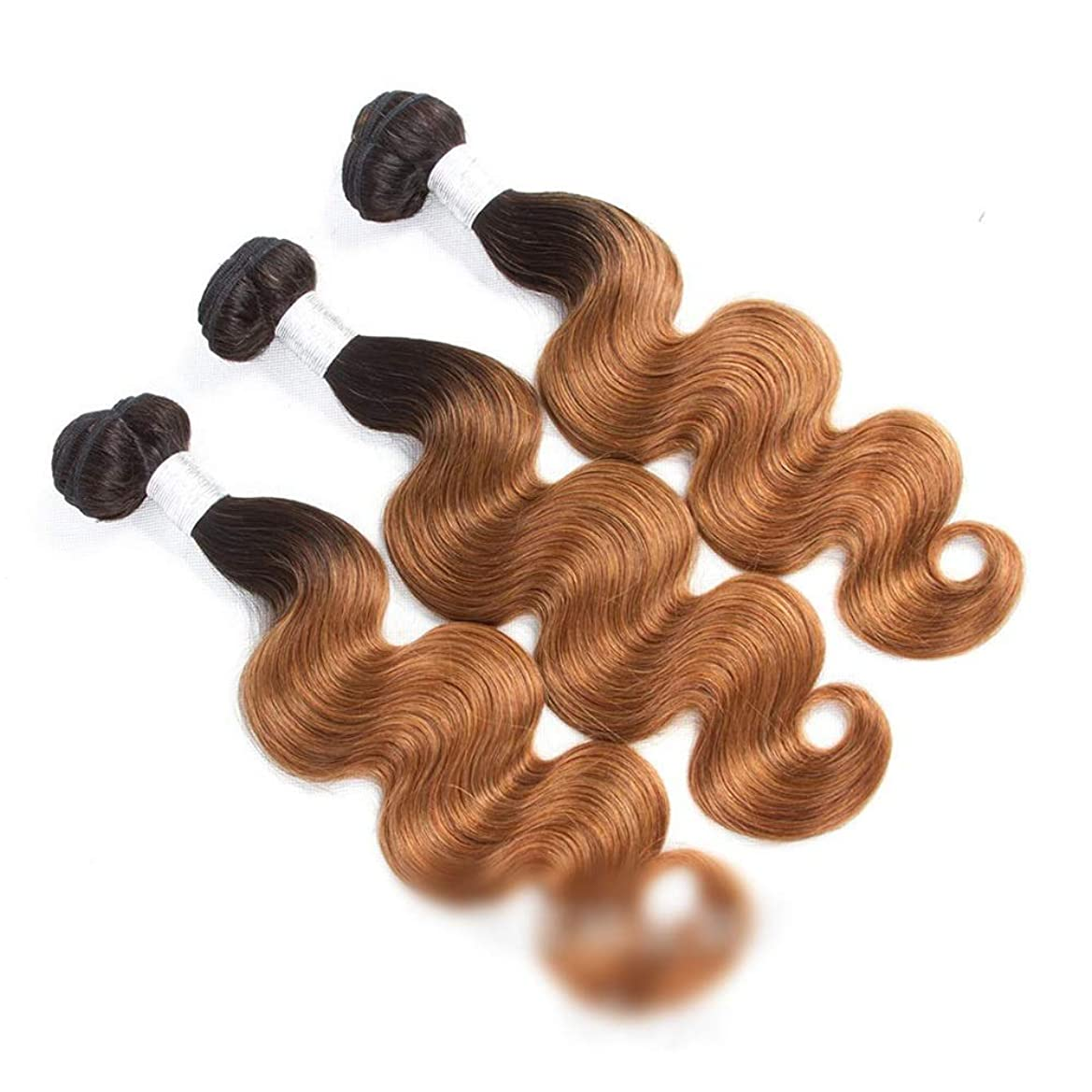 不機嫌そうな判決時系列BOBIDYEE 人毛エクステンションボディウェーブよこ糸1B / 30 2トーンカラー(10インチ-26インチ、110g)ロングストレートウィッグウィッグ (色 : ブラウン, サイズ : 16 inch)
