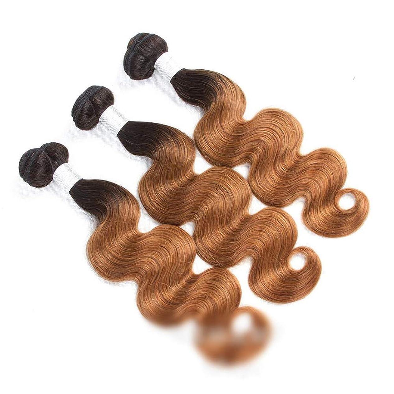 ジュニア側面隔離YESONEEP 人毛エクステンションボディウェーブよこ糸1B / 30 2トーンカラー(10インチ-26インチ、110g)ロングストレートウィッグウィッグ (色 : ブラウン, サイズ : 26 inch)