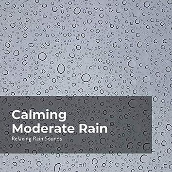 Calming Moderate Rain