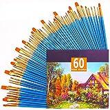 Juego de 60 pinceles de nailon para el pelo para acrílico, óleo, acuarela, pintura artística