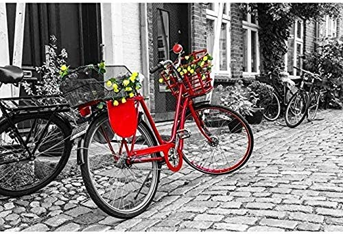 MSQRP Puzzle Adulto 1000 Piezas Rompecabezas de Madera Juguetes Bicicleta roja Puzzle de Paisajes Niños y Adultos Puzzle de Cartón Juegos Educativos Juego Familiar
