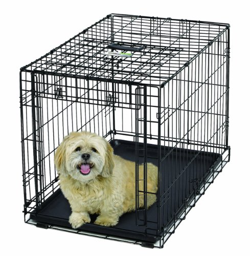 MidWest Homes for Pets Ovation Single Door Dog Crate, 31.25-Inch | 20% AmazonPets Basic Beds Crates Dog Equipment for Free from Homes Keep Midwest on Pet pets Prime products Save Select Selection Selections Shipping Supplies Them to Top Two-Day up Waiting? Why