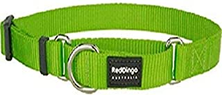 Red Dingo Martingale Classic Collar, Small-Medium, Lime Green