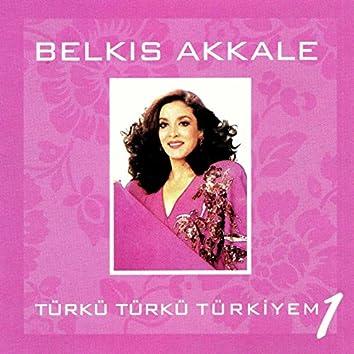 Türkü Türkü Türkiyem, Vol. 1