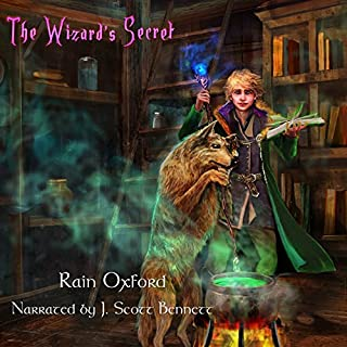 The Wizard's Secret audiobook cover art