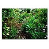 CALVENDO Toile Textile de qualité supérieure - 120 x 80 cm - Un Motif du Calendrier SALENTO est Un tracé par des Jardins cachés - Tableau sur châssis Nature Toile Murale Motif Nature
