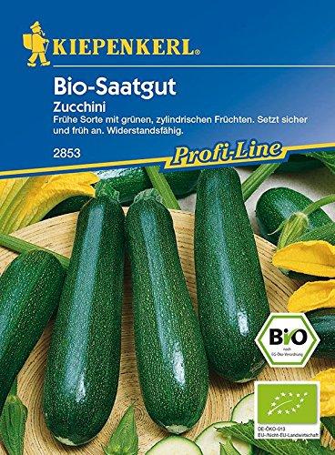 Kiepenkerl Zucchini Dundoo BIO