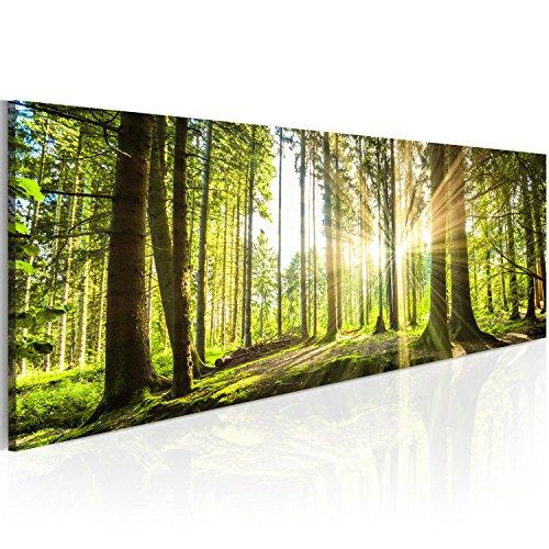 murando Acrylglasbild Landschaft 135x45 cm 1 Teile Wandbild auf Acryl Glas Bilder Kunstdruck Moderne Wanddekoration Wald Bäume Natur c-B-0077-k-b