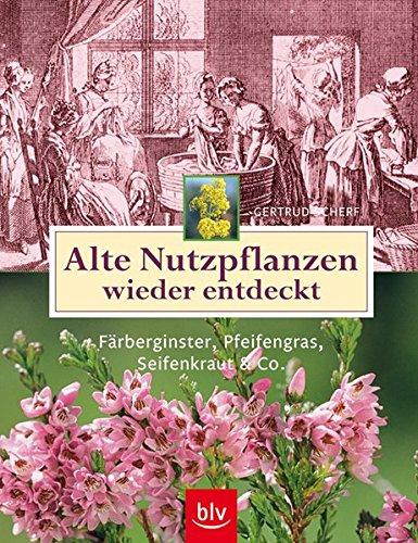 Alte Nutzpflanzen wieder entdeckt: Färberginster, Pfeifengras, Seifenkraut & Co.