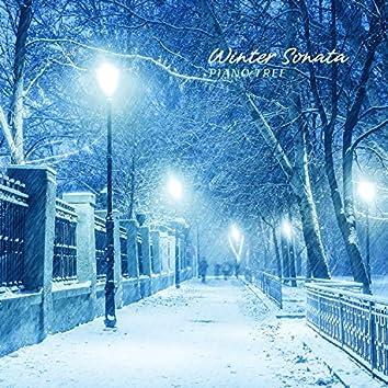 겨울밤의 연가