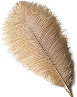 Sowder 10pcs Ostrich Feathers 12-14inch(30-35cm) for Home Wedding Decoration(Champange)