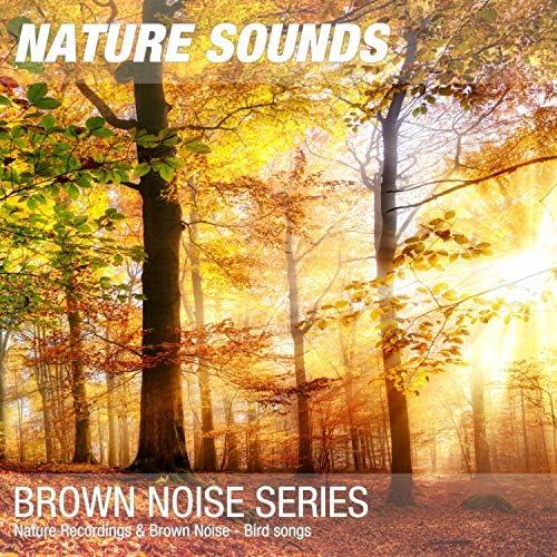Nature Sounds & Nature Noise