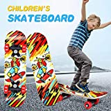 Skateboards for Beginners,TADAMI 17' Wood Cruiser Skateboard,Complete Skate Boards,Beginner Trick Skateboard for Kids,Standard Skateboards for Kids Boys Girls Youths Beginners Starter