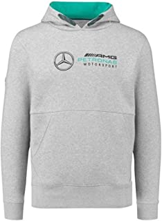 Motorsport Men's Logo Hoodie Grey