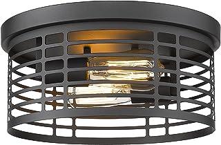 Zeyu 2-Light Flush Mount Ceiling Light, 12.5 Inch...