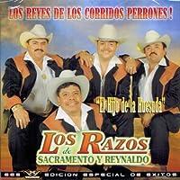 Los Reyes De Los Corridos Perrones