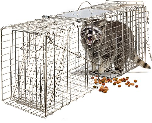 Hunting Cage Traps