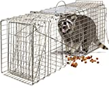 OxGord Live Animal Trap - Humane Catch & Release Large 32' Cage Best for Raccoon, O-possum, Stray...