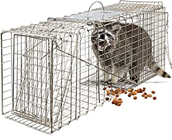 OxGord Live Animal Trap For Groundhogs: photo